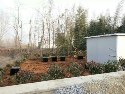 阳谷服务区集中式污水处理项目