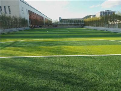 青州人造草坪一米多少钱