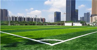 瑞昌足球场人工草坪价格