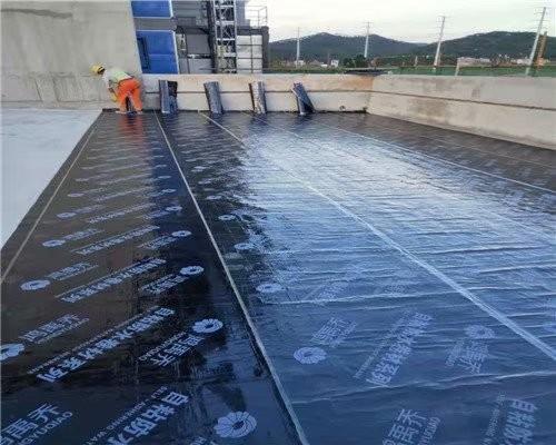 江阴市南闸街道墙面漏水防水公司