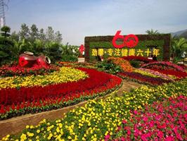 惠州考盆景工证考试内容考试时间报名地点培训考试