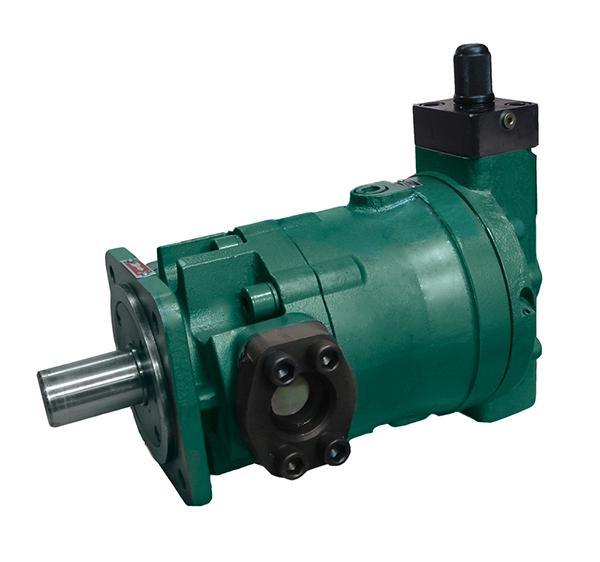 CBWn7-F4.0-CLB齿轮泵