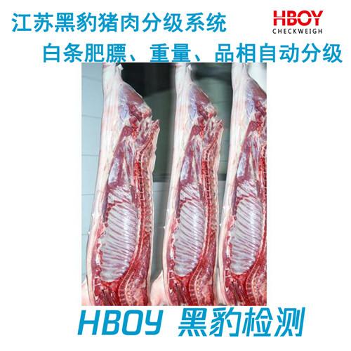 安徽合肥猪肉分级系统厂家