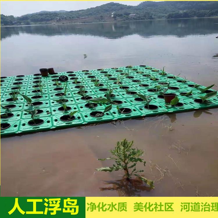 防城港景观浮岛哪家好-水生态修复专业施工队