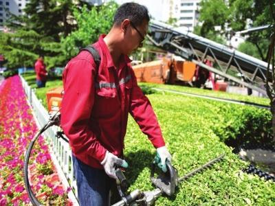 天水园林绿化工证什么时候可以考岗位职责考点精讲
