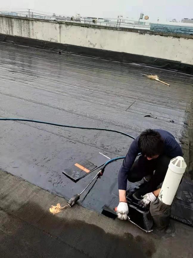 上海金山區亭林鎮老虎窗防水哪家好
