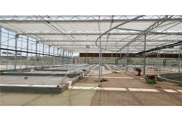 芜湖花卉温室控制系统--奥越信科技