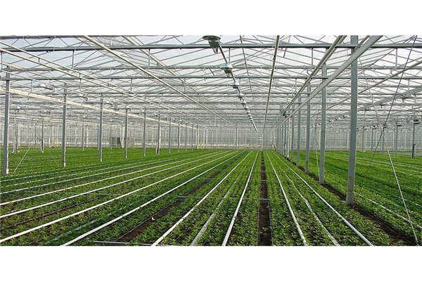 嘉兴物联网农业智能测控系统--奥越信
