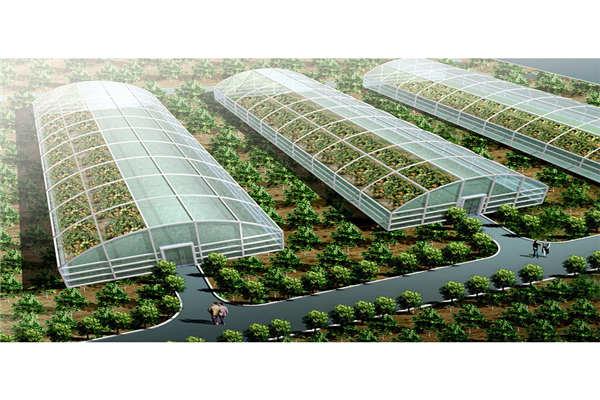 广安科技蔬菜大棚--奥越信科技