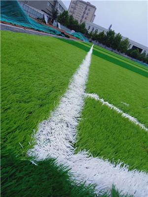 佳木斯籃球場人造草坪規格