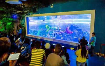 崇左海洋展哪里有出租的、 萌宠展活动方案出租