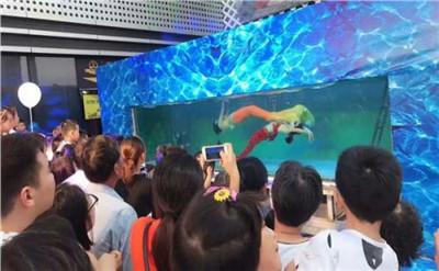 高端马戏团出租 美人鱼表演租赁海洋展-宿迁