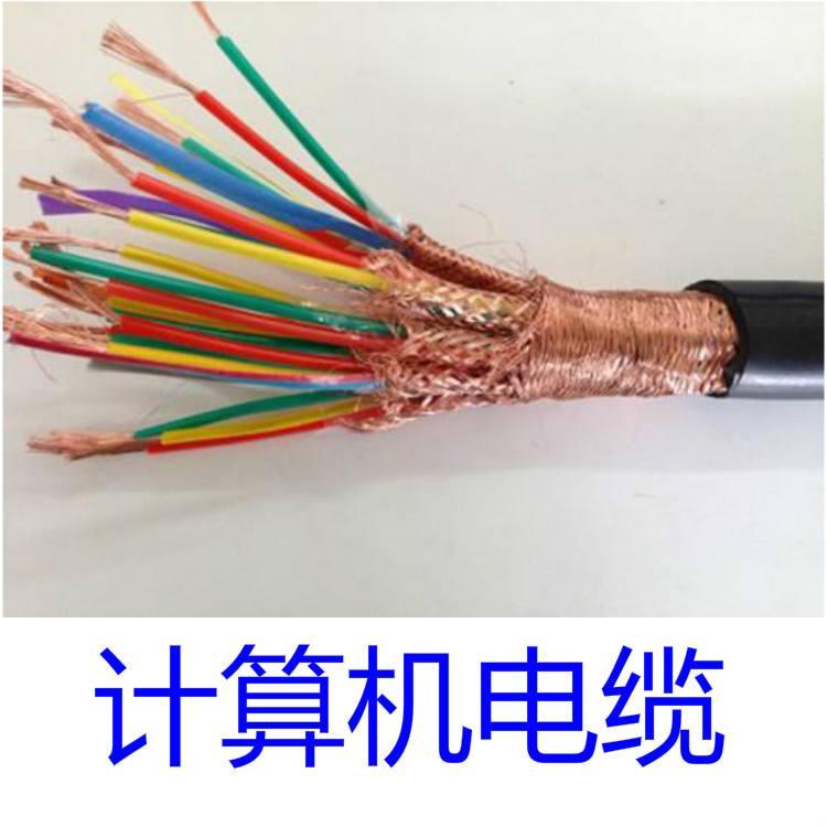 计算机控制电缆DJYJPVP32型号安徽