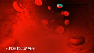云南省怒江傈僳族自治州三维动画案例案例展示