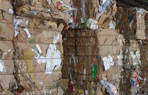南山区纸芯回收量大回收价格高