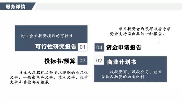 鄂州上传的电子投标书会代写什么价写份标书