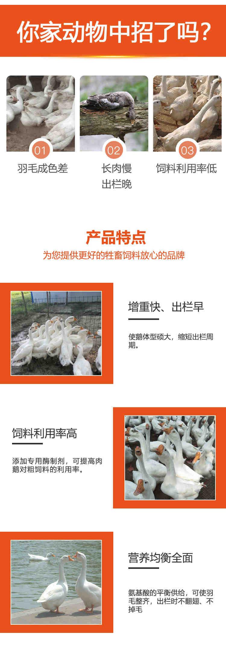 泸县-大白鹅预混饲料供应商原装现货
