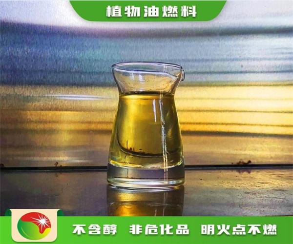 湖南邵阳厨房无醇燃料无醇植物油燃料与灶具集一体实体厂家