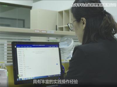 张堰镇设立分支机构咨询