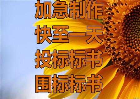 邢台柏乡做项目立项可行,设备工程可研报告,一对一服务