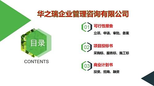洞口县写可行性报告(产业园)立项计划书