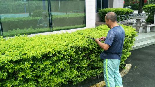 昆明绿化工证要准备什么材料报考kq
