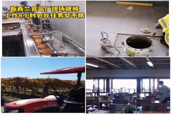 吉林四正规劳务出国打工工厂普工司机厨师澳洲新西兰丹麦以色列挪威等