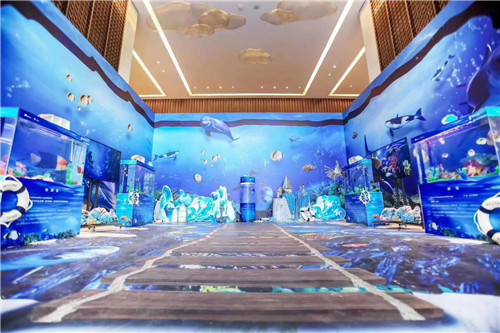老河口市小矮马展览租赁海狮表演海洋节活动