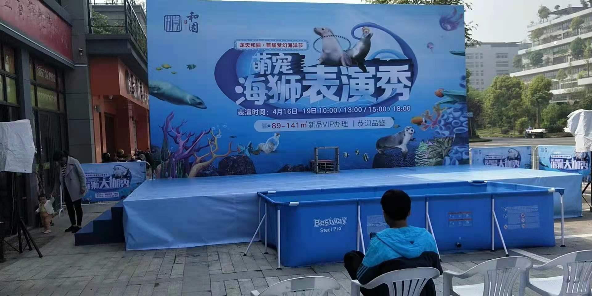 澄海区海洋鱼类展览租赁小矮马展览租赁