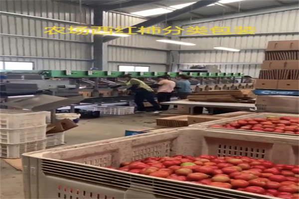 江苏泰州正规劳务2021央视推荐出国好项目新西兰建筑农场工厂夫妻工6万/月请