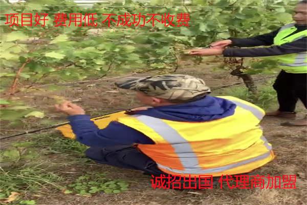 黑龙江大庆万鼎出国劳务一手单资质公司3.15打假安全放心出国务工