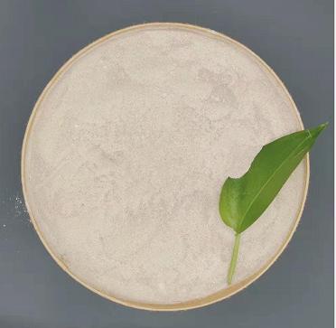 氨氮污水处理菌种,氨氮污水处理菌种查询,氨氮污水处理菌种怎么样