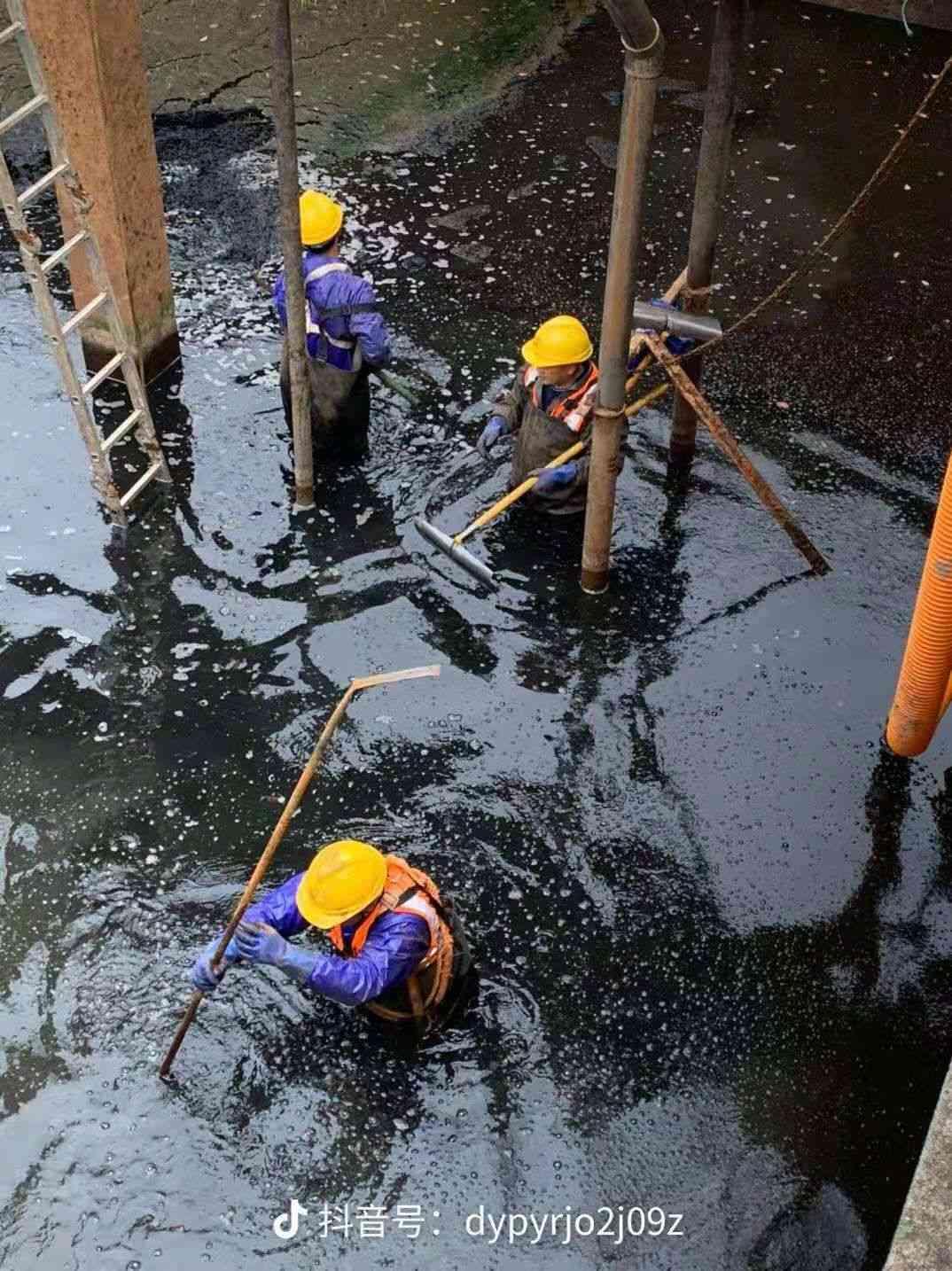 新闻:昆山市污泥压缩处理价格美丽