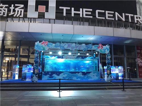克东县萌宠百鸟展租赁多少钱一天