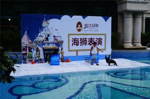 安吉萌宠羊驼展览租赁现场视频图片