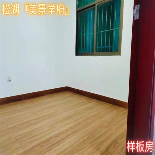 东莞长安小产权房2021松山湖『美景学府』两房70-78㎡有优惠吗?
