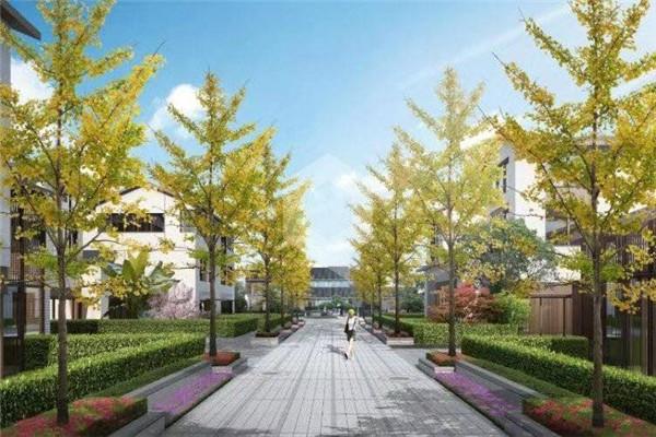 【正式通知】上海金山【海玥瀜庭】性价比怎么样?能不能买?