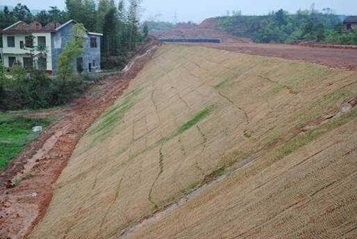 崇左植被毯椰丝植草毯绿化抗冲生物毯