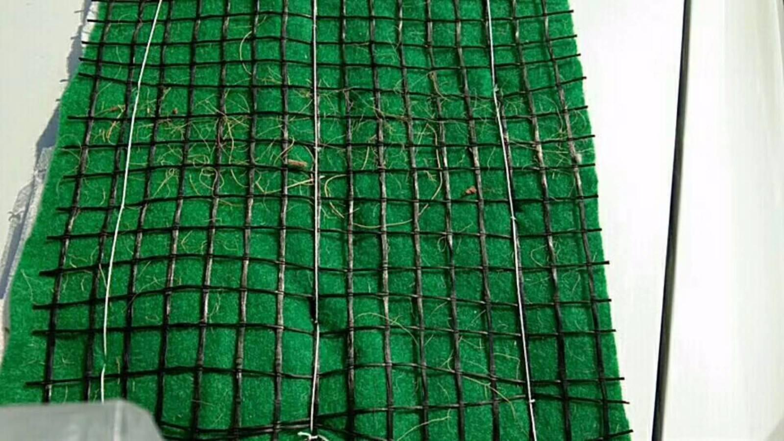 葫芦岛加筋抗冲毯麻网椰纤植生毯植草毯