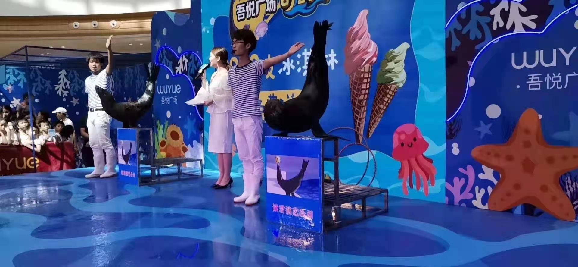 泸州小马戏表演租赁,矮马出租多少钱一天