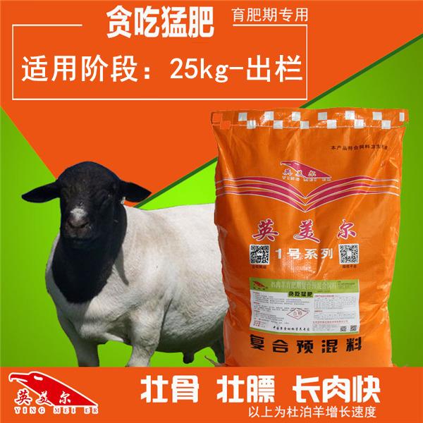 延安黄陵\\羊吃什么长得快肥羊吃什么长得快肥