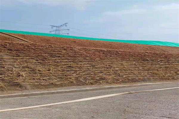 乌海边坡绿化厂家防护措施