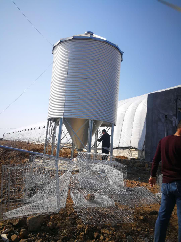 江州畜牧养殖饲料传送厂家供货金山料塔料线