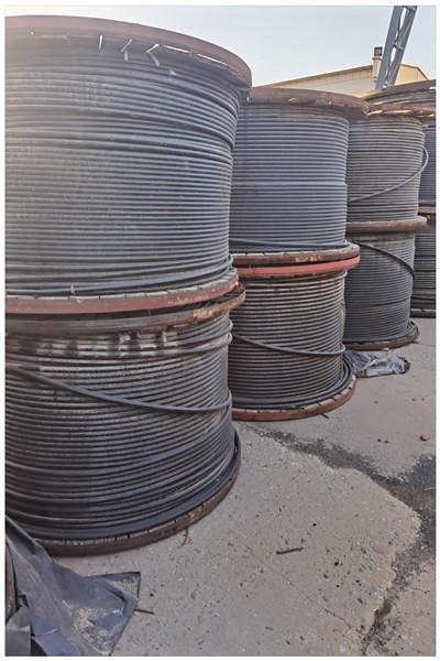欢迎:电缆回收佛山