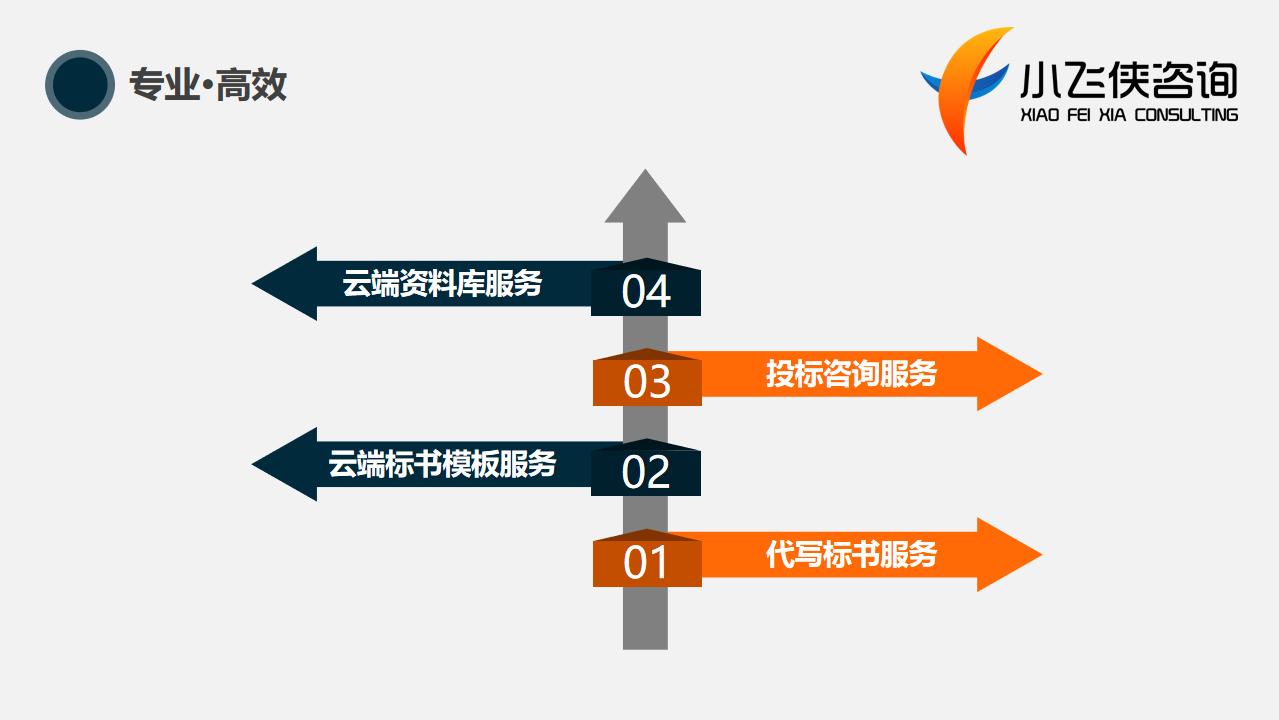 阜沙2021代写标书-本地公司-全程指导小飞侠咨询公司