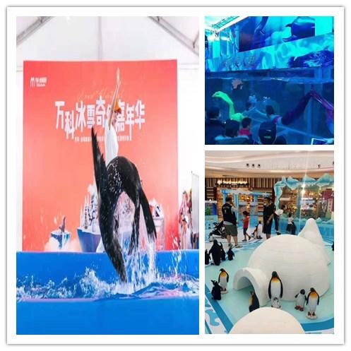 湖北大冶市美人鱼表演出租租赁海洋展