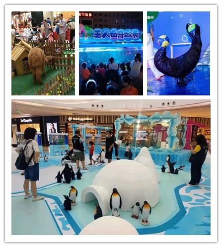 广东翁源市美人鱼表演出租租赁企鹅