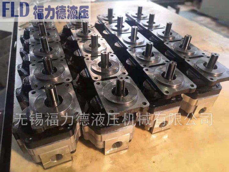 GM5-10-1-13R-20-R齿轮泵