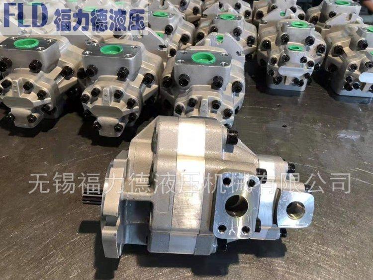 G5-25-25-1S17S-20-L,福力德齿轮泵