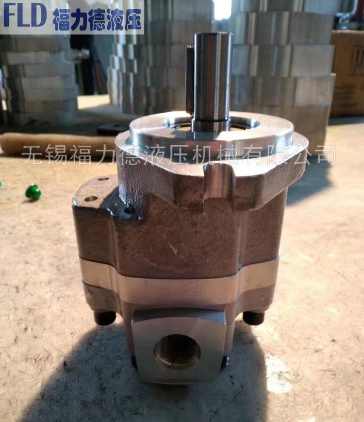 GPC4-20-CE2F3-G5-06-F-L,福力德齿轮泵